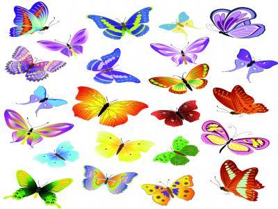 Маникюр Пеперуди 15   6/7см цена: 2.50